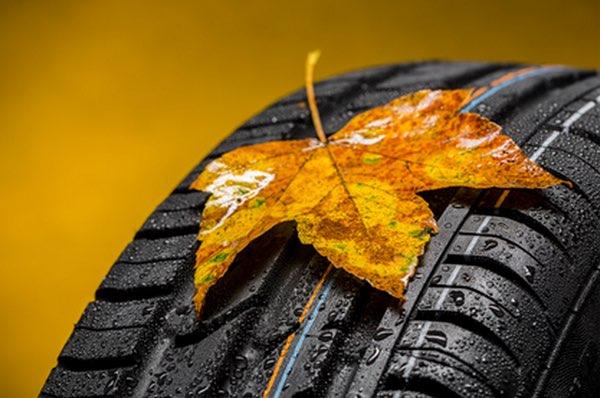 Gartenmobel Aus Paletten Bauen : ᐅ Reifen auf Rechnung bestellen  Auflistung aller Shops